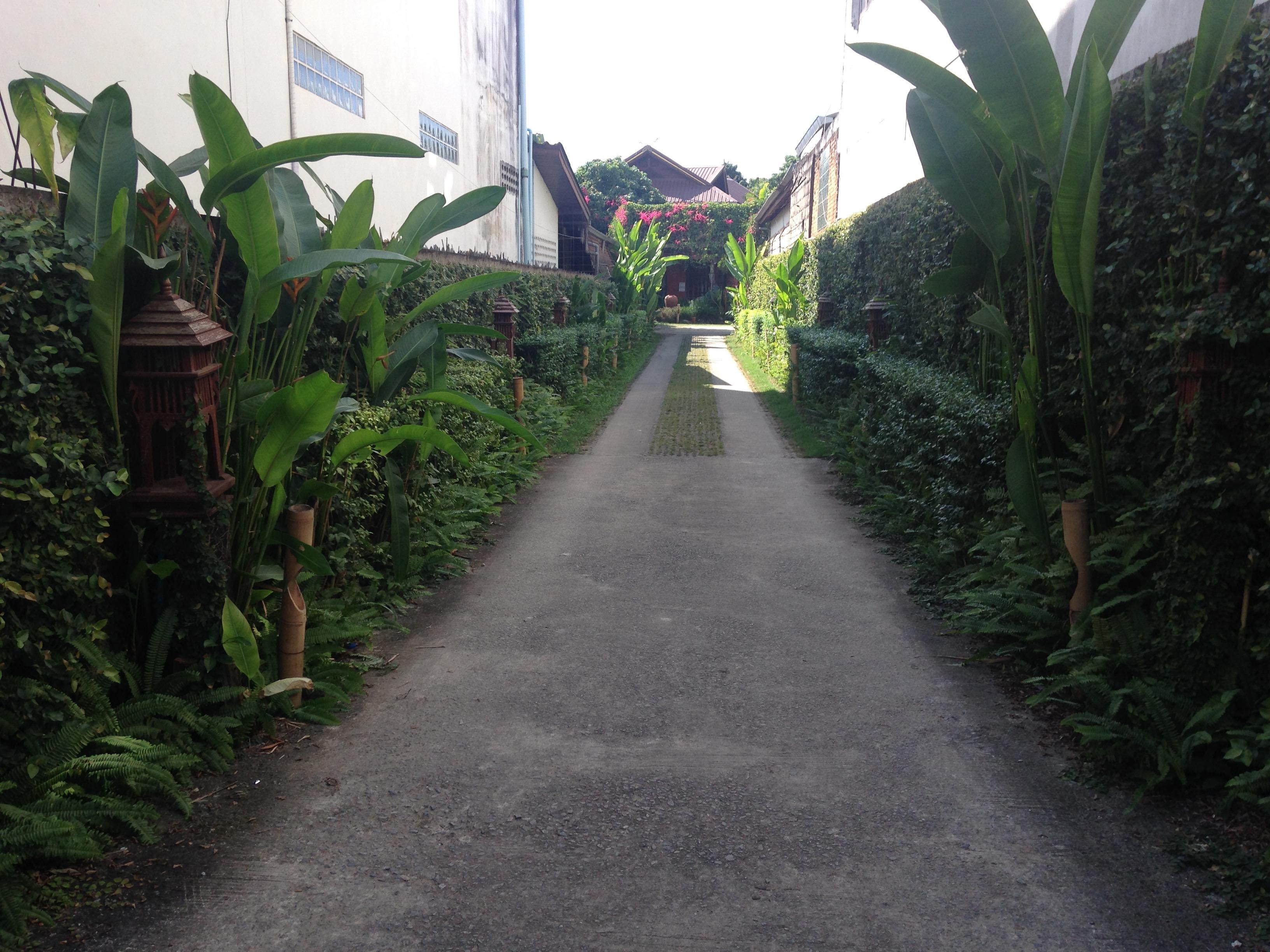チェンコーン 宿 ゲストハウス 世界 一周 タイ