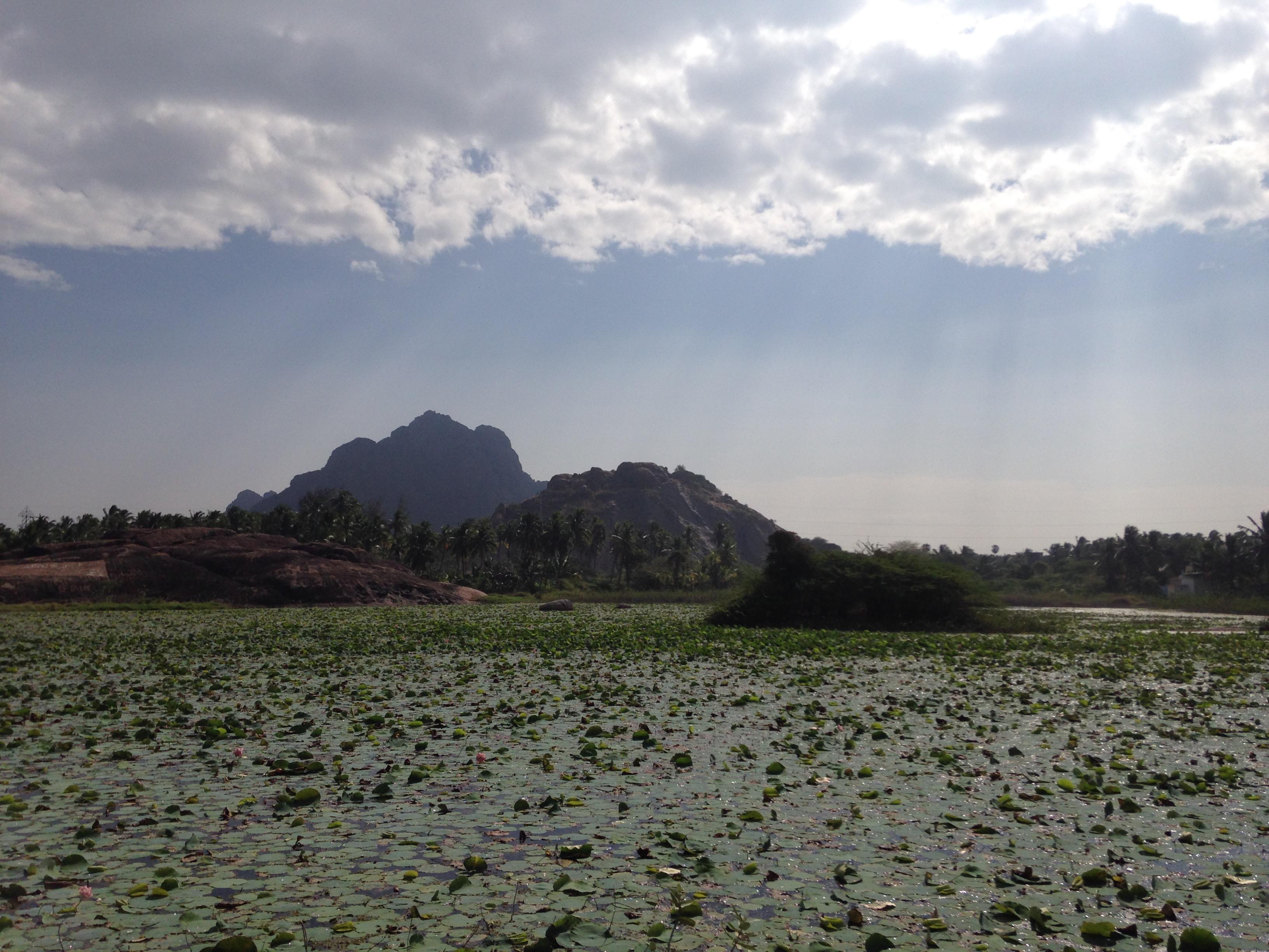 カニャクマリ バルカラ 移動 ローカル バス 風景