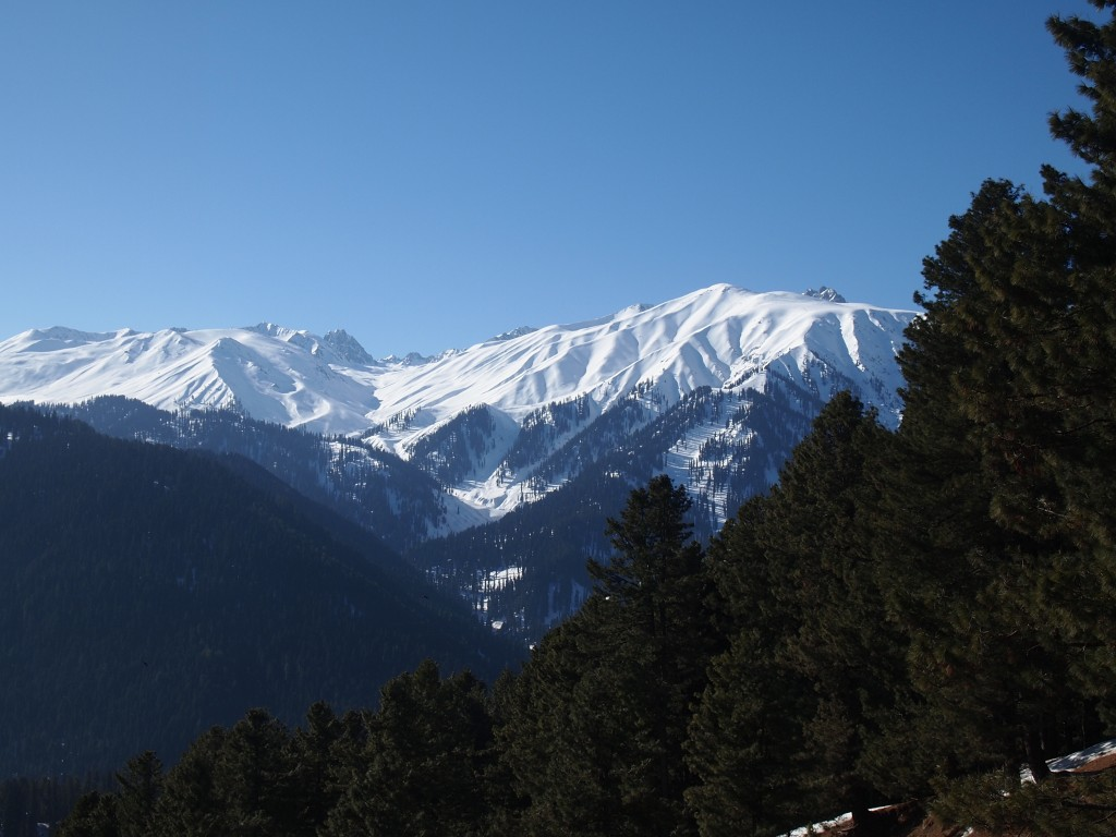インド カシミール タンマルグ 雪山