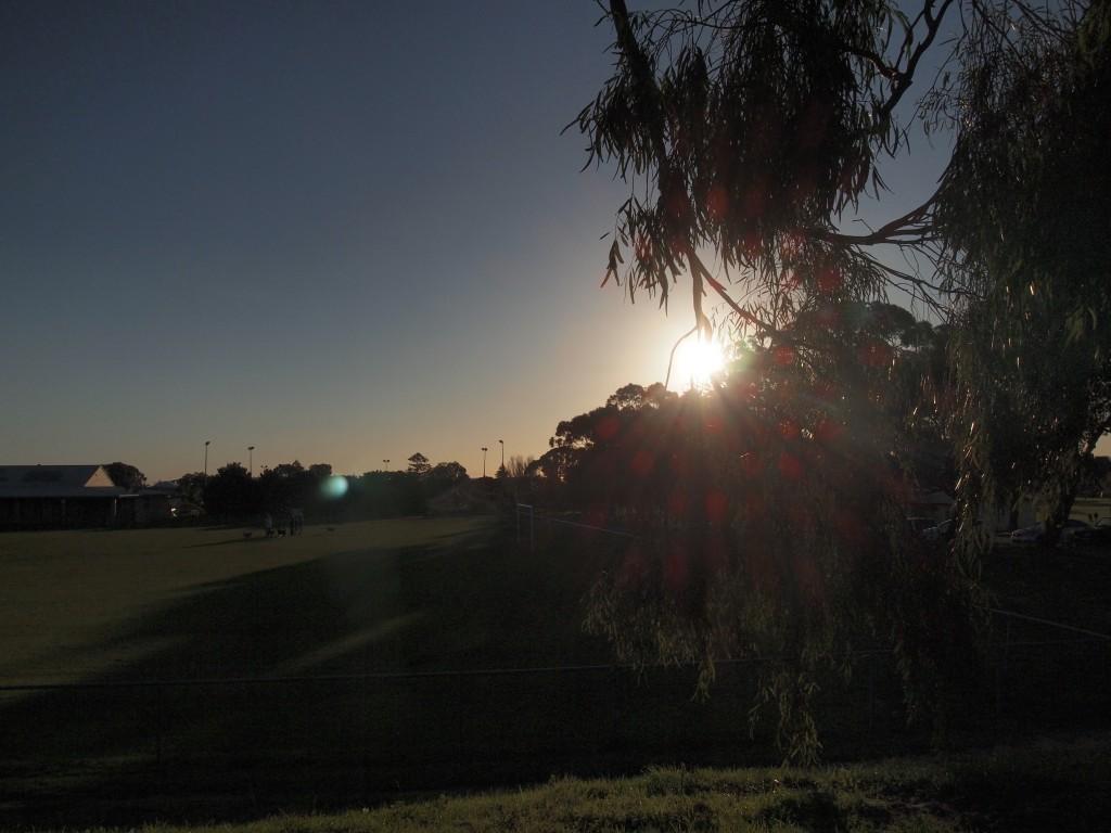 オーストラリア ワーホリ シティ ジョブ 仕事 パース 世界一周 旅 ブログ