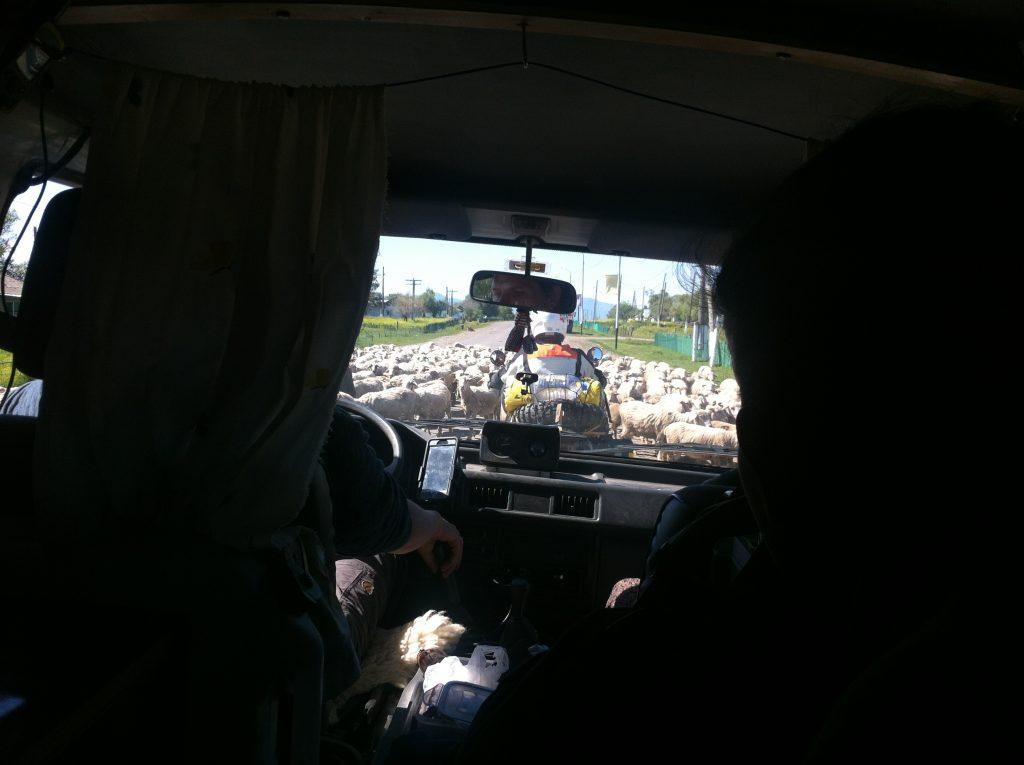 カザフスタン ヒッチハイク 世界一周 ケゲニ