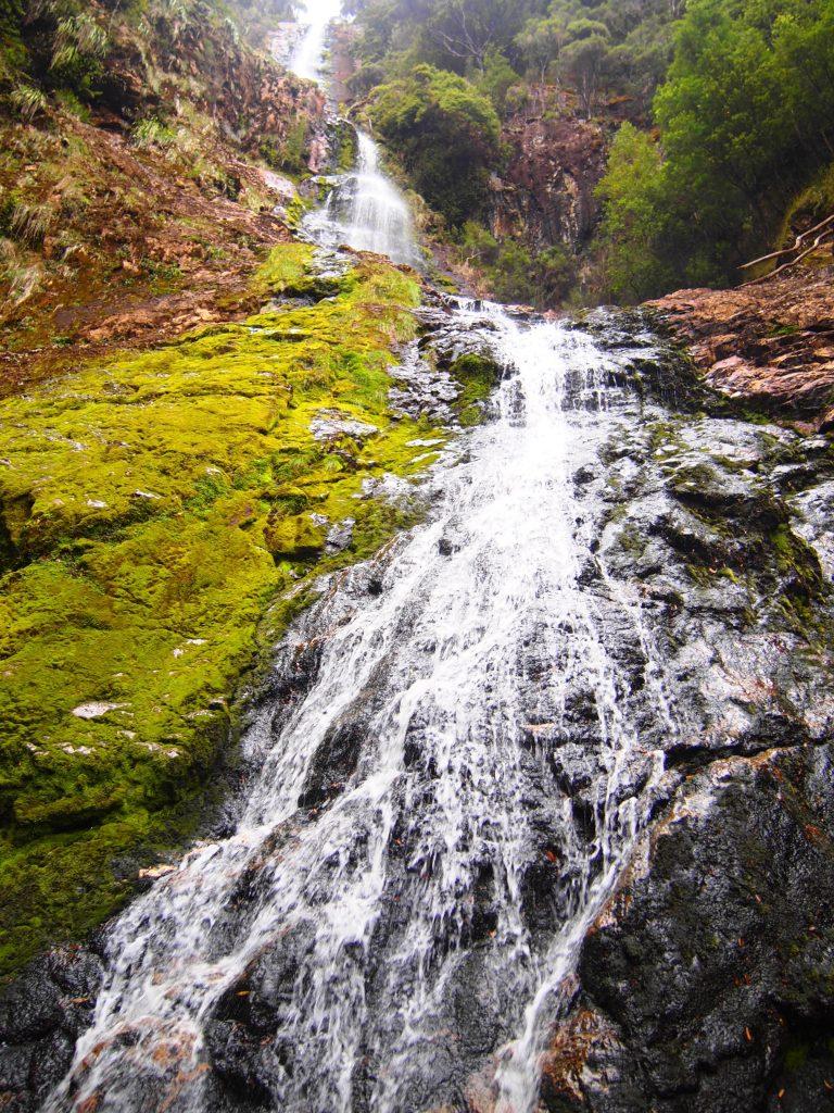 タスマニア,自然,絶景,世界一周,オーストラリア,旅,ブログ,夫婦,クレイドルマウンテン