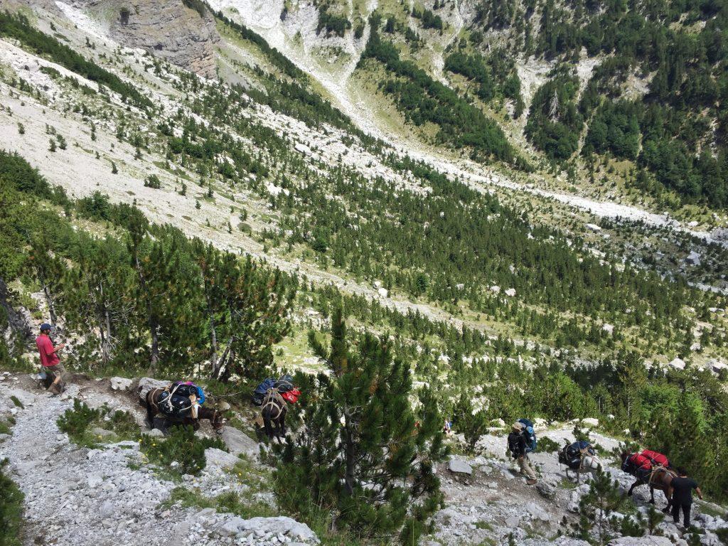 アルバニア セス トレッキング 絶景 世界一周 旅 ブログ バルカン半島 バルボーナ キャンプ