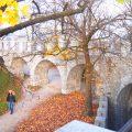 世界一周 ヨーロッパ スロベニア リュブリャナ 観光