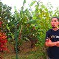 ヘミングウェイ 老人と海 キューバ コヒマル 観光 田舎 世界一周 夫婦 ブログ